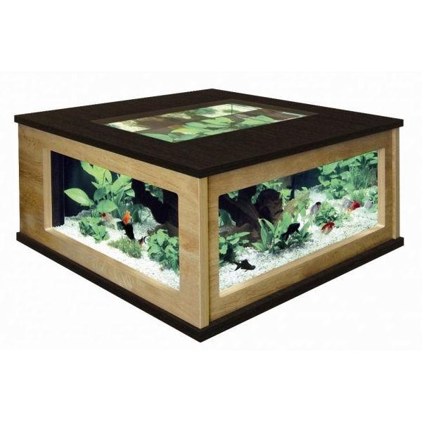 Table basse aquarium tuto