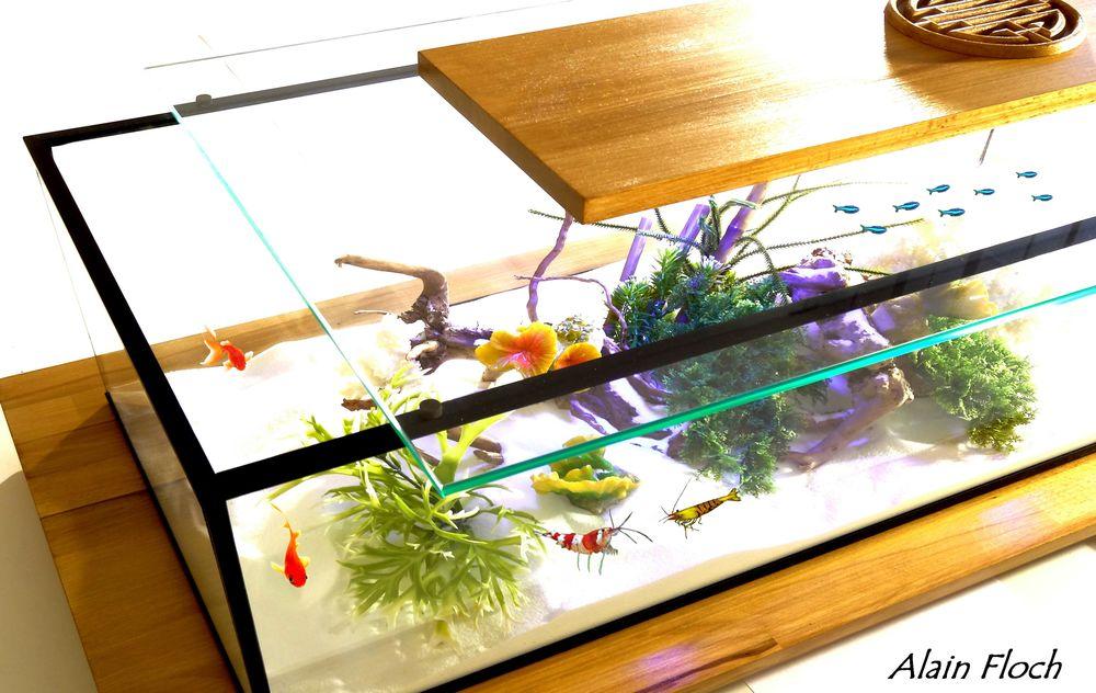 Acheter table basse aquarium occasion