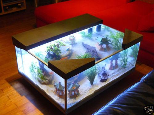 Table basse style aquarium