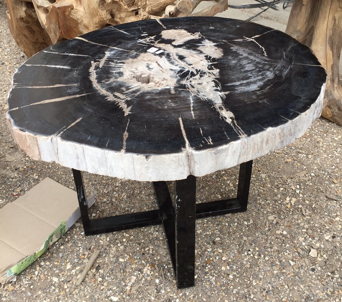 Table basse bois fossile
